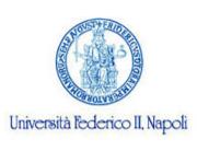 Universita Federico II